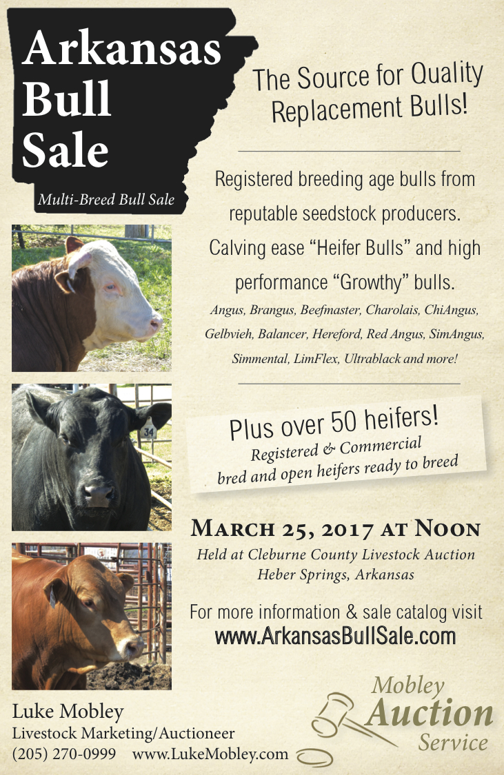 Visit ArkansasBullSale.com For bull information and sale catalog